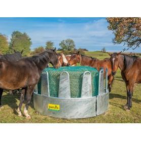Ronde hooiruif voor paarden met 12 voerplaatsen en veiligheidsvoerhek