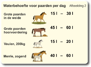 waterbehoefte paarden en pony per dag