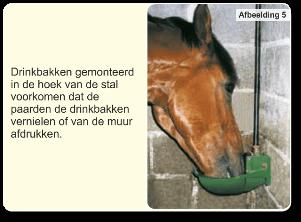 drinkbakken waterbakken gemonteerd in de hoek van een paardenstal